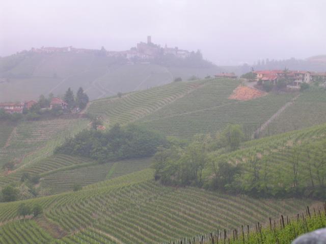 La Nebbia 1