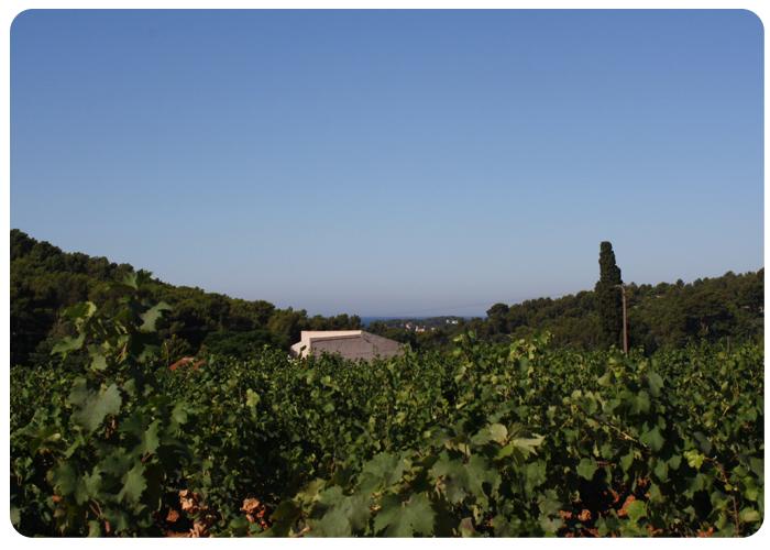 Terrebrune-Sanary