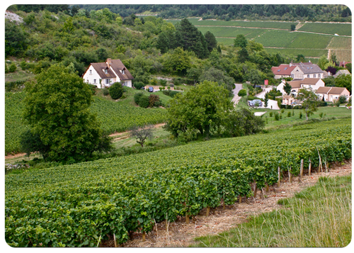 nantoux-and-hautes-cotes-de-beaune