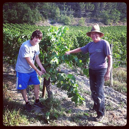 Anthony&wine_harvester_WEB